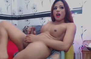 Wonderful Japanese Ladyboy Gets..